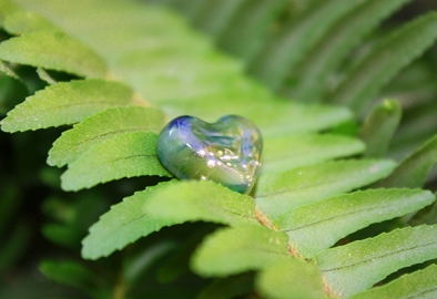 WildFern Mini Heart