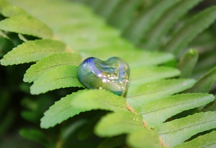 WildFern Mini Heart