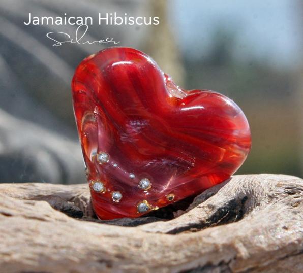 JamaicanHibiscusSilverMH