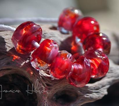 Jamaican Hibiscus Seeds