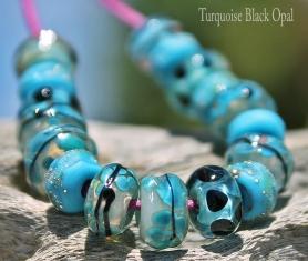 Seeds-TurquoiseBlackOpal